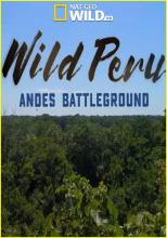 Дикая природа Перу: арена боев – Анды