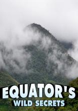 Необычная природа экватора