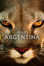 Дикая природа Аргентины