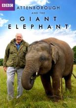 Аттенборо и Гигантский Слон