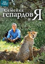 Семейка гепардов и я