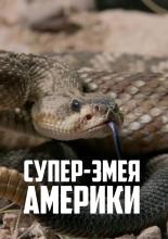 Супер-змея Америки